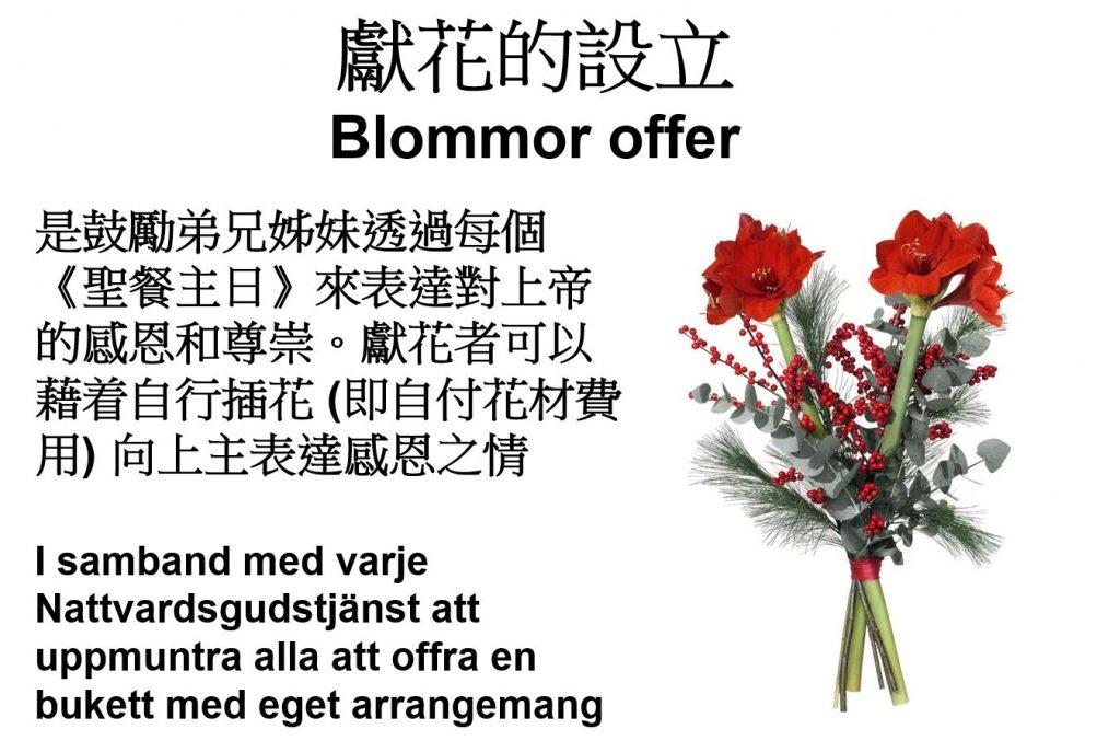 BlommorOffer